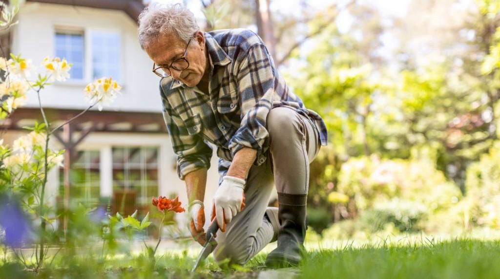 Un homme qui jardine.